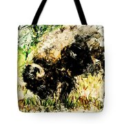 Grazing Bison Tote Bag