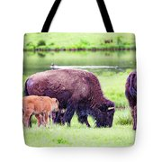 Grazing Bisons Tote Bag