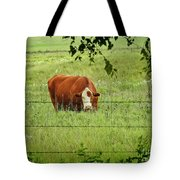 Grazing Cow Tote Bag