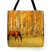 Grazing Horse In The Autumn Pasture Tote Bag