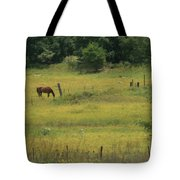 Grazing Horse Tote Bag