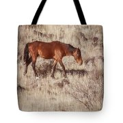 Grazing In The Winter Grass Tote Bag