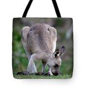 Grazing Kangaroo Tote Bag