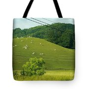 Grazing On The Mountain Side Tote Bag