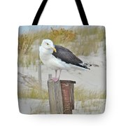 Great Black Backed Gull - Larus Marinus Tote Bag