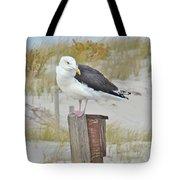 Great Black Backed Gull - Larus Marinus Tote Bag