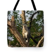Great Blue 2 Tote Bag