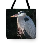 Great Blue At Rest Tote Bag