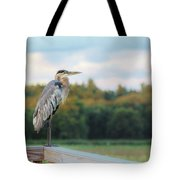Great Blue Great View Great Meadows Tote Bag