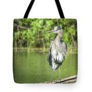 Great Blue Hair Tote Bag