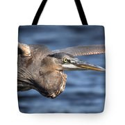 Great Blue Heron Close-up Tote Bag