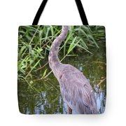 Great Blue Heron Closeup Tote Bag