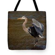 Great Blue Heron - Flooded Creek Tote Bag