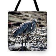 Great Blue Heron In Galapagos Tote Bag