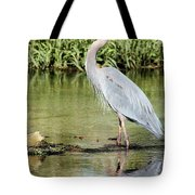 Great Blue Heron Tote Bag