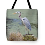 Great Blue Heron Near Pond Tote Bag