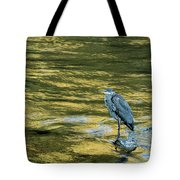 Great Blue Heron On A Golden River Tote Bag