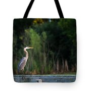 Great Blue Heron On A Handrail Tote Bag