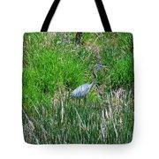 Great Blue Heron Series 1 Of 10 Tote Bag