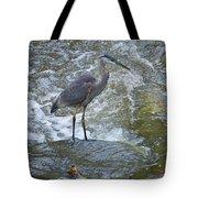 Great Blue Heron Standing In Stream Tote Bag