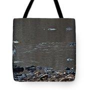 Great Blue Heron Wading 1 Tote Bag