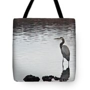 Great Blue Heron Wading 3 Tote Bag by Douglas Barnett