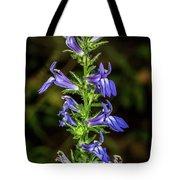 Great Blue Lobelia Tote Bag