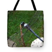 Great Blue Skimmer Tote Bag