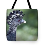 Great Curassow Tote Bag