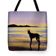 Great Dane At Sunset Tote Bag