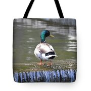Great Day For A Swim Tote Bag