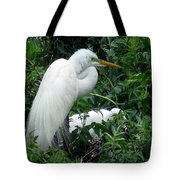 Great Egret 17 Tote Bag