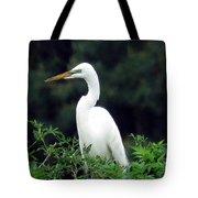 Great Egret 19 Tote Bag