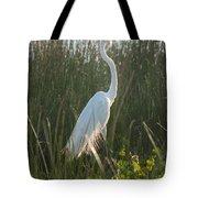 Great Egret At Coba Village Tote Bag