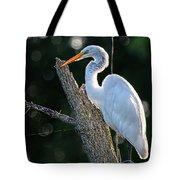 Great Egret At Rest Tote Bag