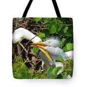 Great Egret Chicks And Mom Tote Bag