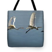 Great Egret Flight Sequence Tote Bag