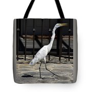 Great Egret In The Neighborhood Strutting 1 Tote Bag