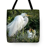 Great Egret Mom And Babies Tote Bag