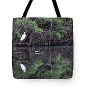 Great Egret Resting Tote Bag