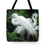 Great Egrets 10 Tote Bag