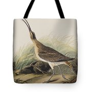Great Esquimaux Curlew Tote Bag