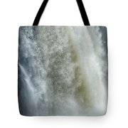Great Falls Of Paterson Nj Tote Bag