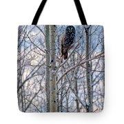 Great Grey Owl Tote Bag