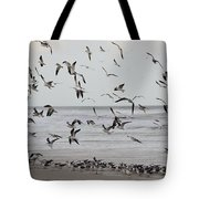 Great Gull Group On The Beach Tote Bag