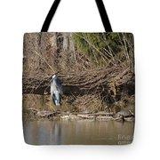 Great Heron And Turtles  Tote Bag