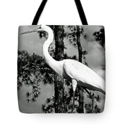 Great Heron Tote Bag
