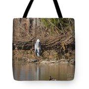 Great Heron Turtles And Grebe Duck  Tote Bag