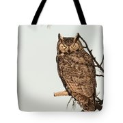 Great Horned Owl At Dusk Tote Bag