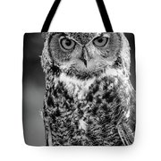 Great Horned Owl Bw IIi Tote Bag
